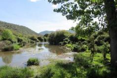Proyecto Agua Forestal II del Programa Empleaverde de la Fundación Biodiversidad