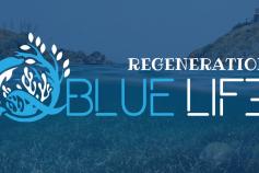 Mejora del empleo de calidad a través del progreso y el crecimiento de la Economía Azul (EA) relacionado con la restauración, protección y conservación del medio marino, y el turismo sostenible en los ecosistemas marinos.