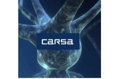Logo CARSA Empleaverde