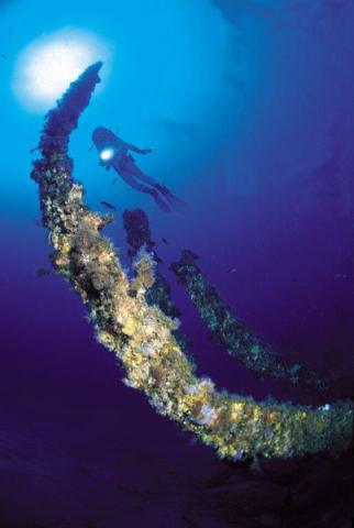 Proyecto Protección marina y diversificación en la reserva de la Biosfera de Menorca del Programa Empleaverde de la Fundación Biodiversidad