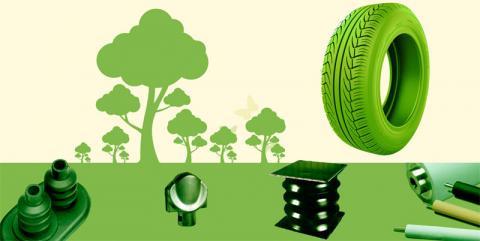 Proyecto  Greenyecorubber del Programa Empleaverde de la Fundación Biodiversidad