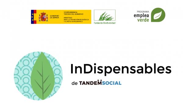 Logo InDispensables